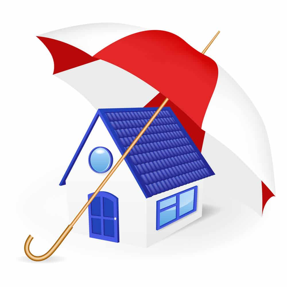 Waterproof Your Home to Prevent Mold And Mildew Growth: Five Reasons, Drainage & Waterproofing, Raleigh, NC