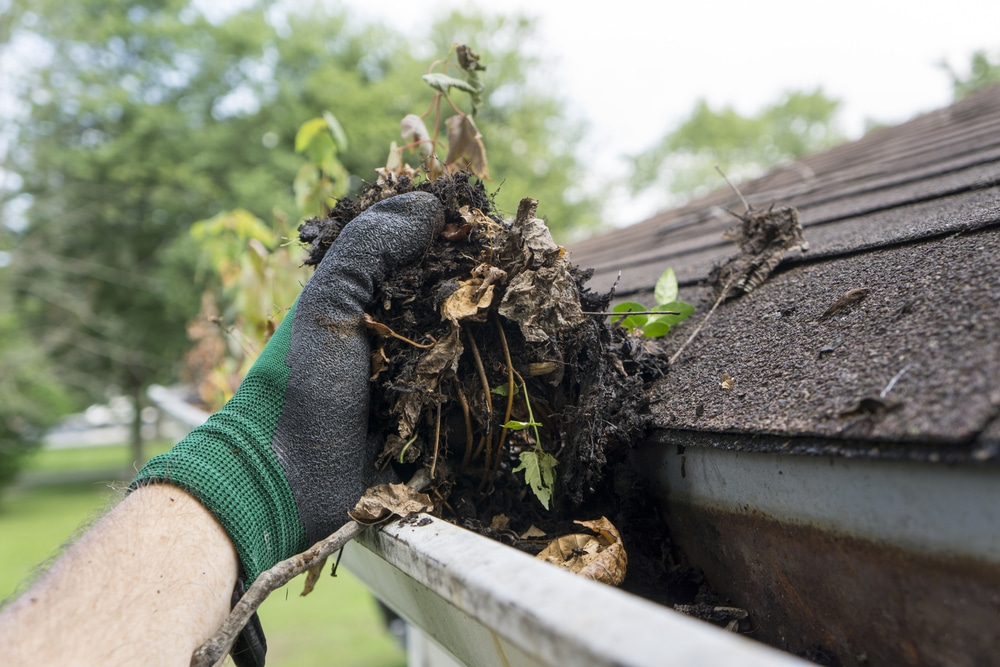 Water Intrusion Companies say gutters and downspouts are of great significance